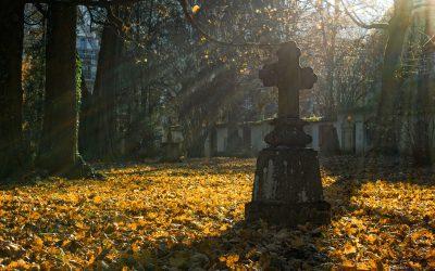 Cmentarz przy ul. Brzozowej