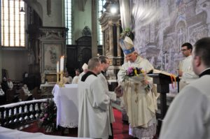 Katedra Świdnicka