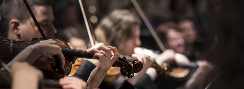 Akademia Bachowska Junior i Chór Społeczny – Koncert