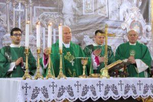 Katedra Śwdnica