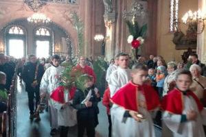 Katedra Świdnica